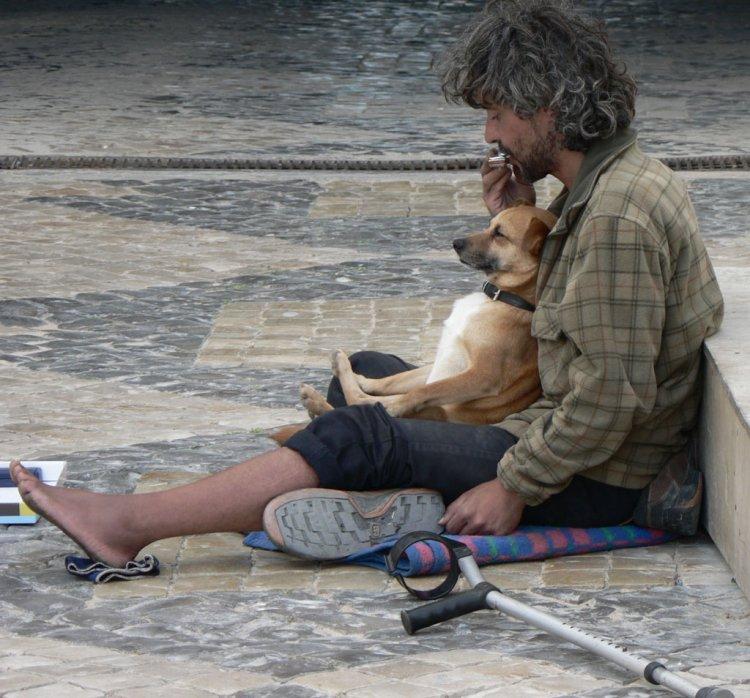 Photo of Quem alimentar os sem-abrigo arrisca pagar multa