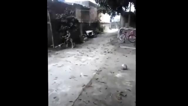 Photo of PARTIDA: Dar pontapé numa bola cheia de areia