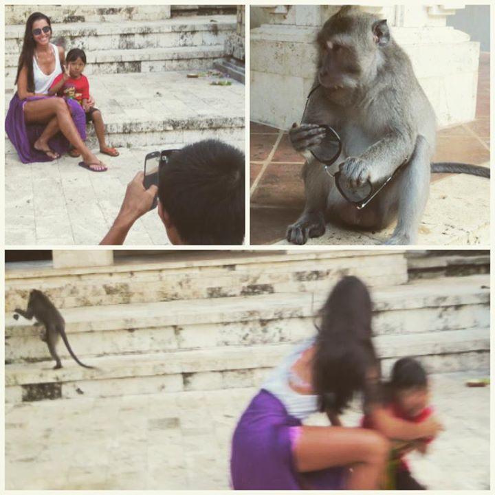 Photo of Kelly Baron foi atacada por um macaco na Indonésia
