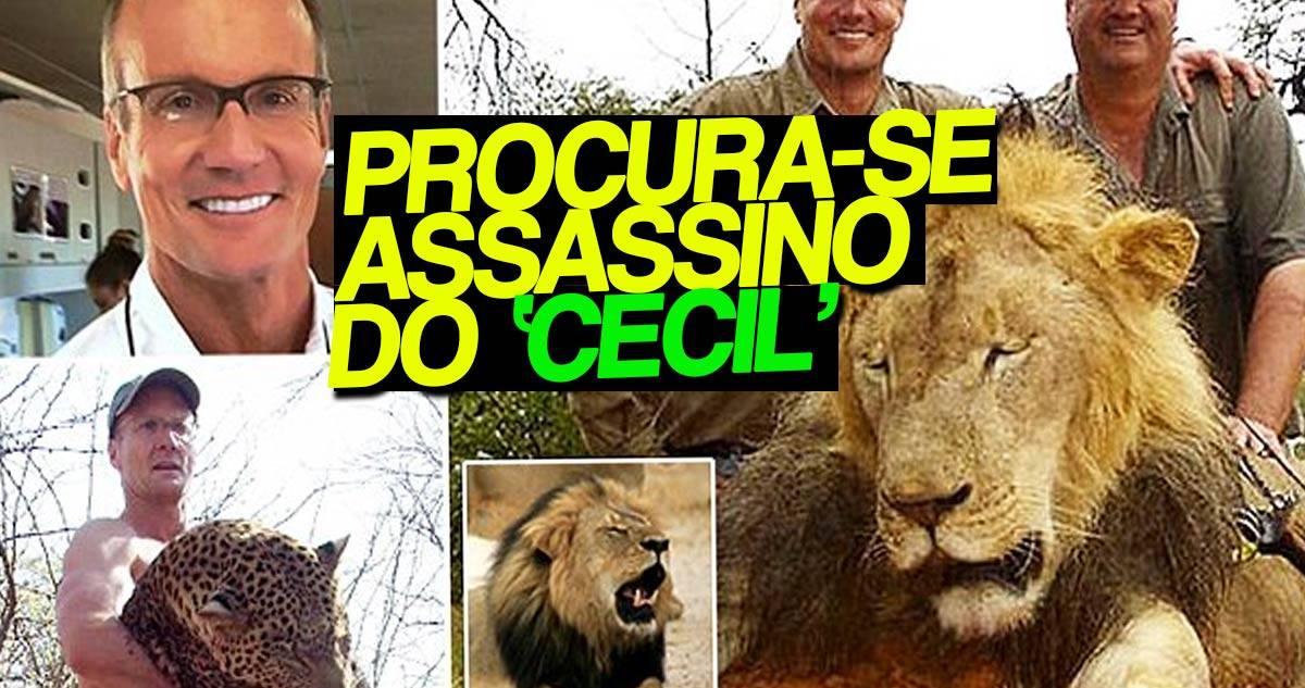 Photo of Já se sabe quem é o homem que matou leão mais acarinhado do Zimbabué