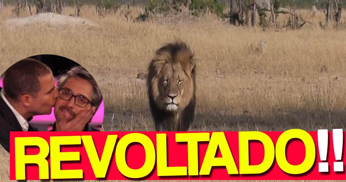 Photo of Nuno Markl revoltou-se nas redes sociais devido ao Cecil
