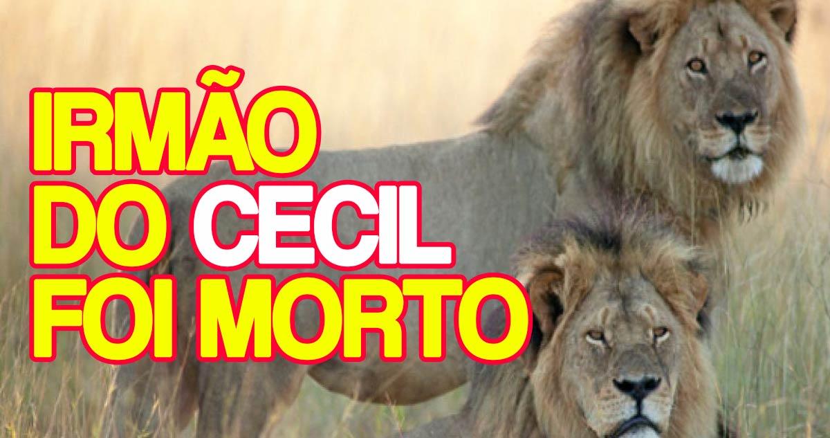 Photo of Leão Jericó: Irmão de Cecil, morto a tiro este sábado