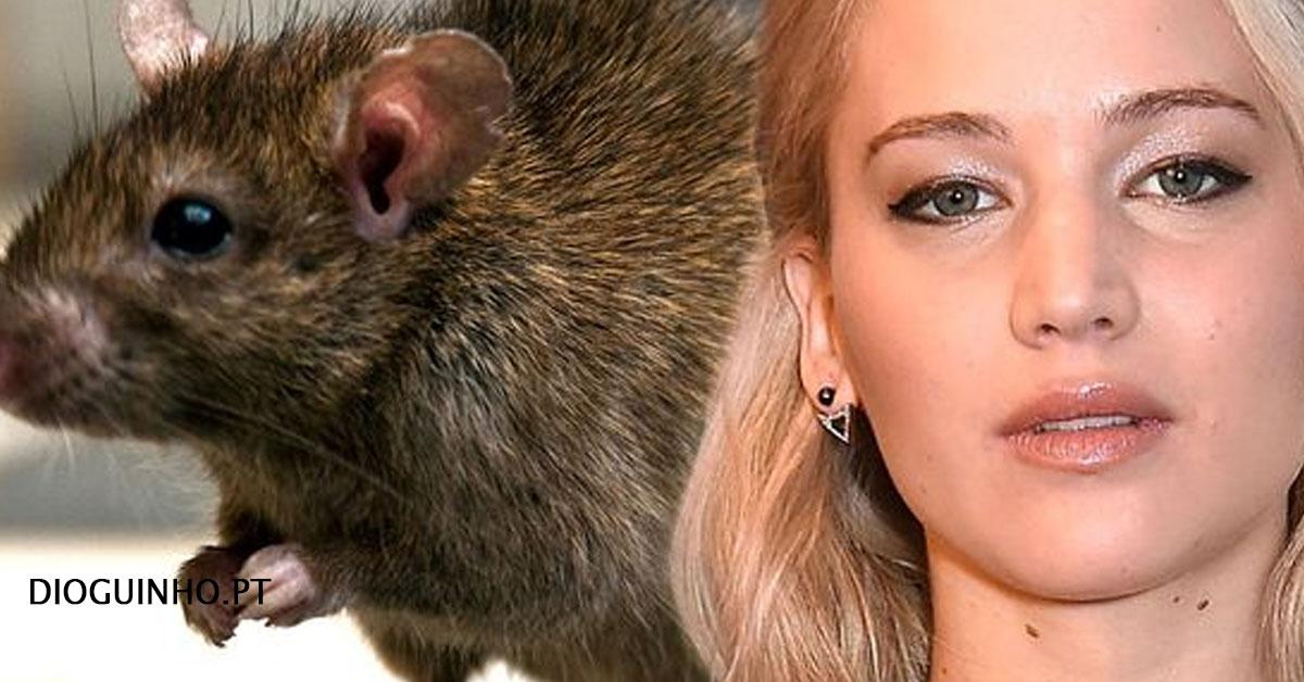 """Photo of Jennifer Lawrence diz que foi """"criada por ratos"""""""