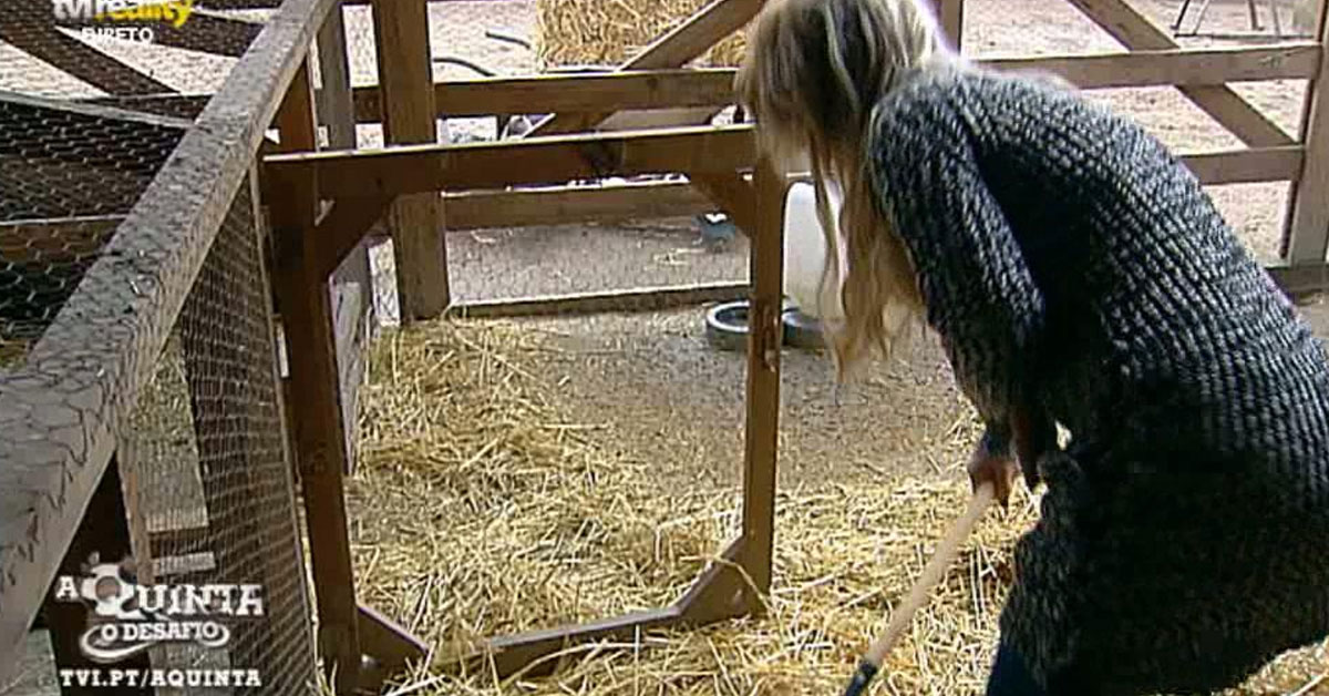 Photo of Patroa Agnes trabalha na quinta e fica com tarefa da Jéssica