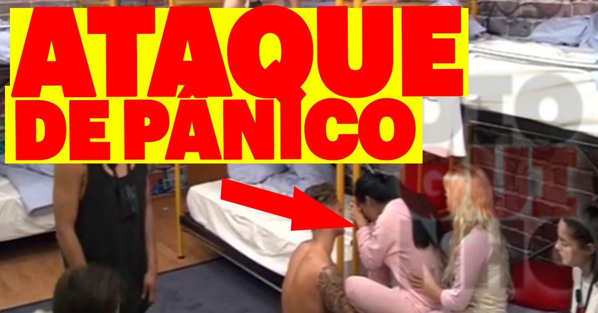 Photo of Andreia Machado tem ataque de pânico por causa de um bicho