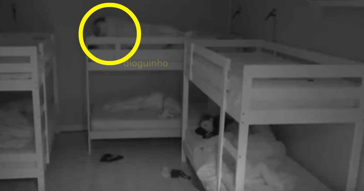 Photo of Margarida Aranha e o Cláudio Coelho ENROLADOS na cama… forte e feio