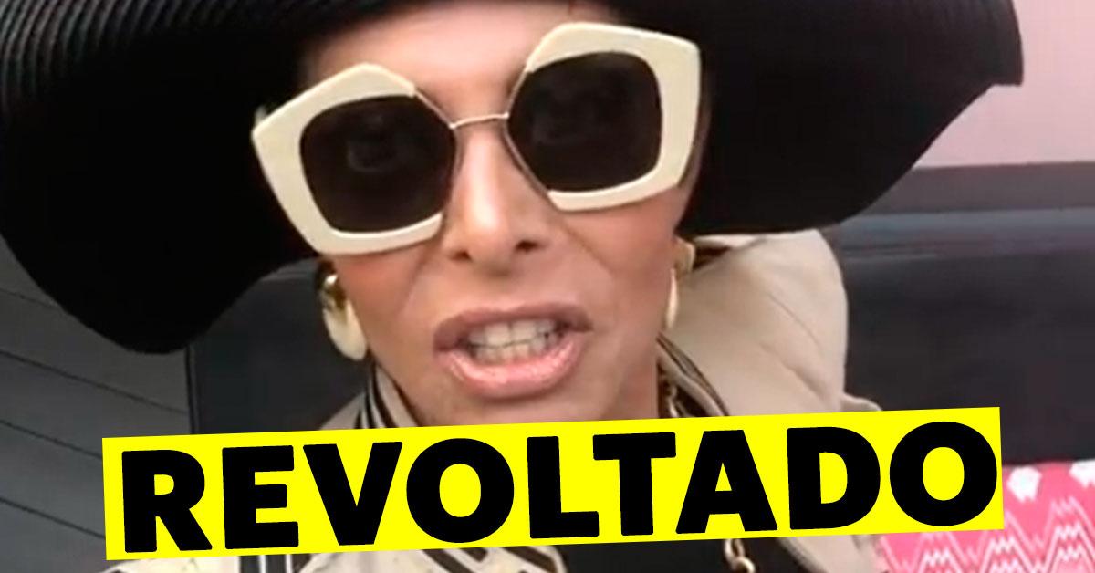 """Photo of José Castelo-Branco ARRASA """"Querem macho! Serem cobertas como cadelas de rua"""""""