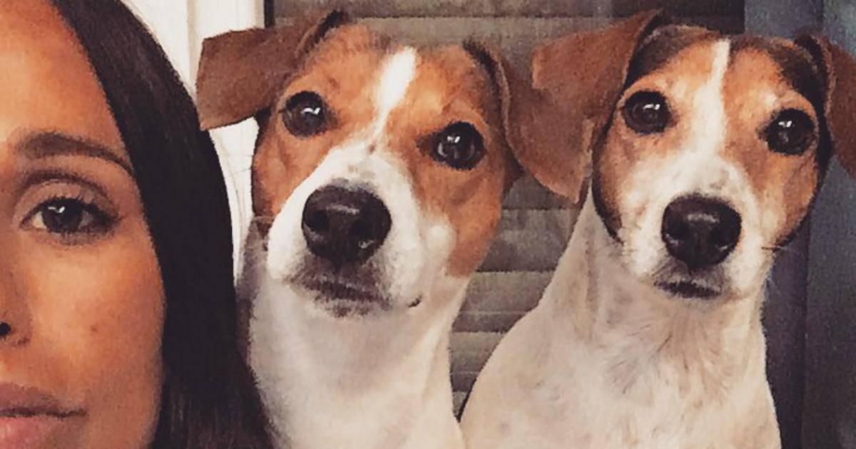 Photo of Rita Pereira e a mensagem à sua cadela após morte repentina