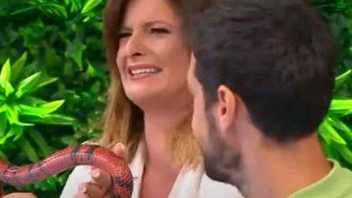 Photo of Maria Botelho Moniz em pânico com cobra nas mãos «Tirem-me daqui!»