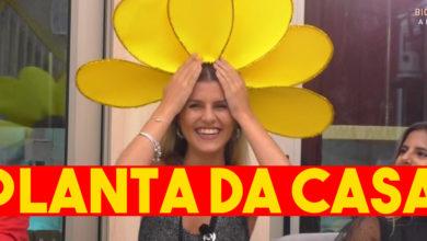 Photo of Jéssica Antunes eleita a PLANTA da casa do 'Big Brother – A Revolução'